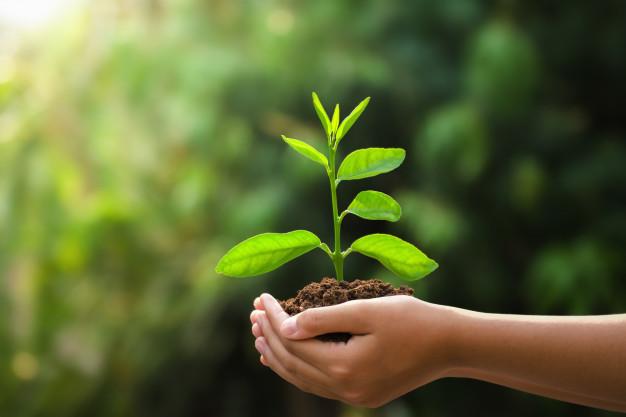 sustainable_development_1.jpg